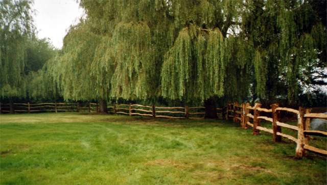<span>Ref: A4</span><br>Oak fencing surrounding a lake adds to the character of this rural scene. Top rail at 3', materials approx £30.25/metre inc. VAT