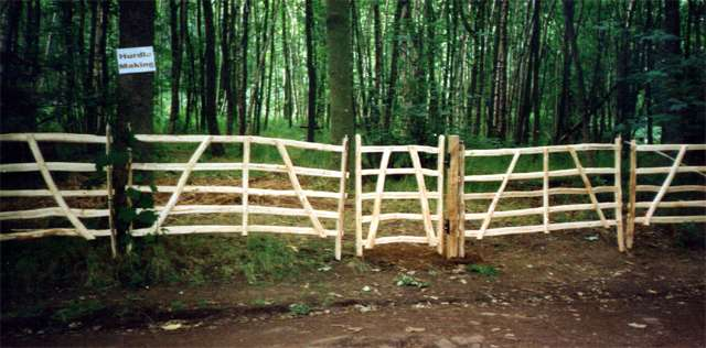 "<span>Ref: A42</span><br>Gate hurdles are portable, yet strong , and make an attractive fence for the garden; 6' x 3'6"" at £120 each inc. VAT"