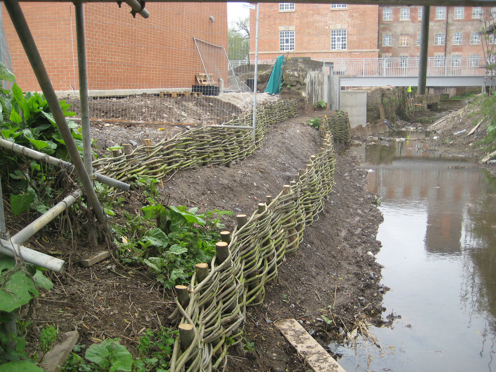 <span>Ref: D6</span><br>Living willow rods woven between the posts, awaiting backfilling with soil.