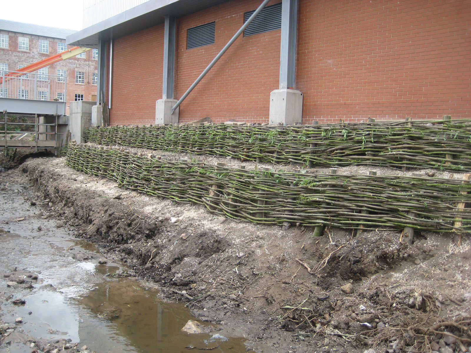 <span>Ref: D9</span><br>The willow posts and rods will root into the bank helping to stabilise the soil.
