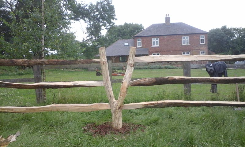 <span>Ref: A24</span><br>A natural fork step over/squeeze stile in chestnut; £60 inc. VAT.