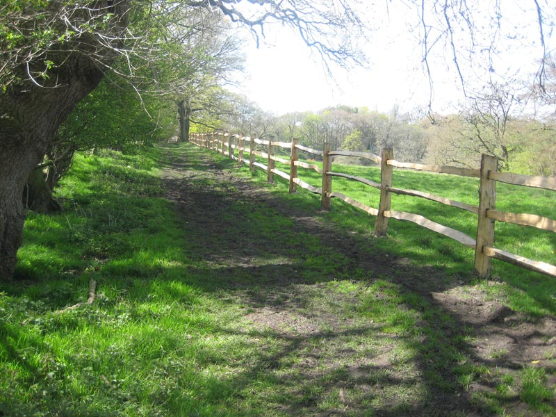 <span>Ref: A15</span><br>This cleft fence keeps horses and walkers safely on the bridleway; materials approx £20.15/metre inc. VAT.