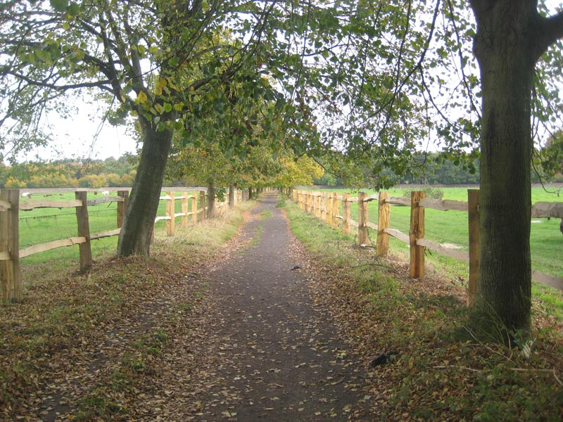 <span>Ref: A19</span><br>A 4' high cleft chestnut fence lining the Cinder Track from the mill to Dunham Massey Estate, National Trust, Cheshire; materials approx £14.74/metre inc. VAT.