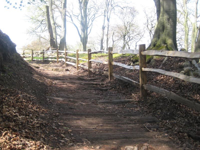 <span>Ref: A16</span><br>Sawn chestnut posts here made it easier to sink them into the bedrock along this track on the valley side, for The National Trust, Cheshire; materials approx £20.15/metre inc. VAT.