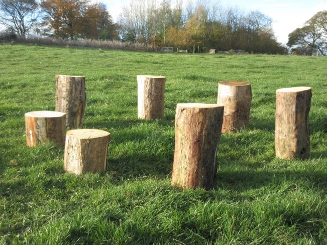 Log Seating / Log Seats